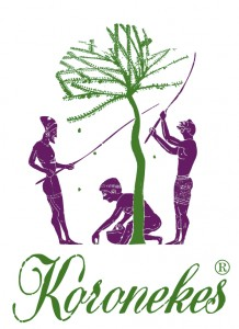 logo-koronekes