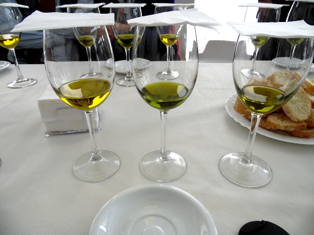 degustation d'huiles d'olive
