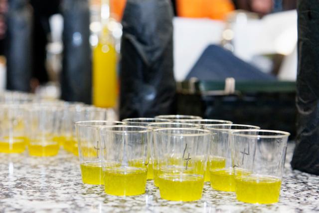 degustation huiles d'olive