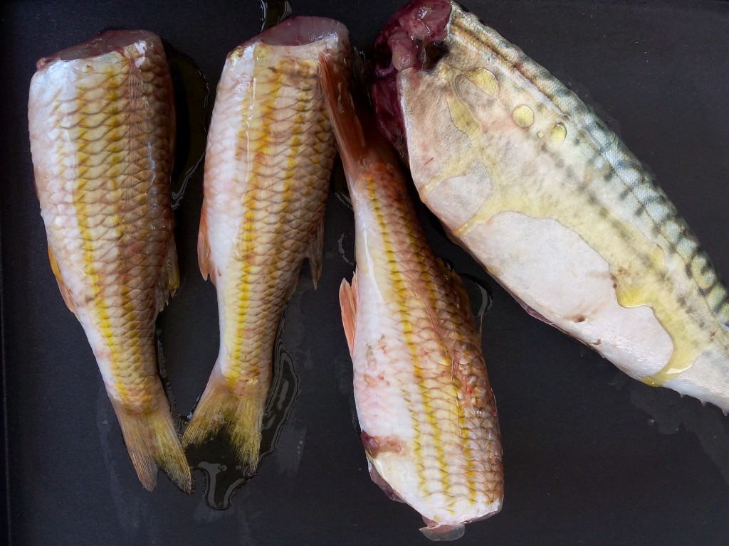poisson gras source d'omega 3