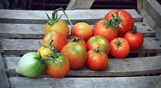 arôme de tomate